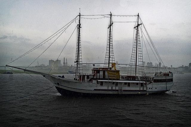 Cruise Ship Art Auctions – An Insider's View